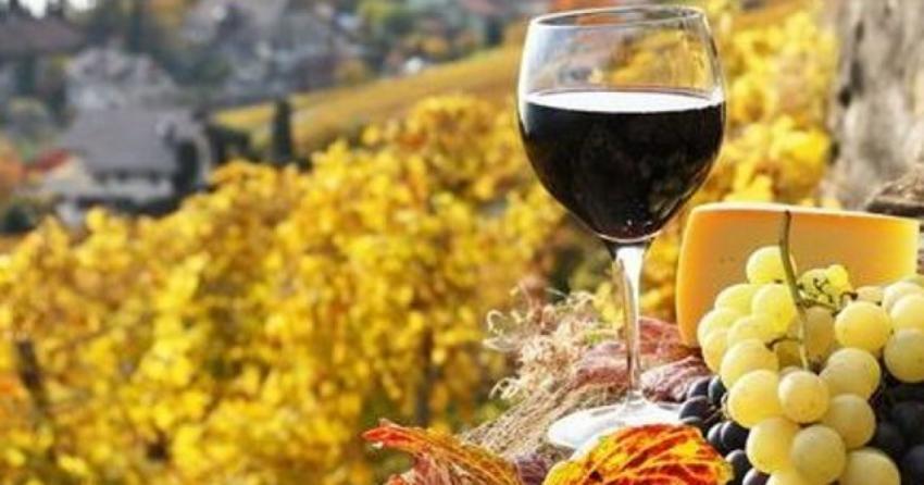 Ajutoare de stat: Comisia aprobă o schemă românească în valoare de 12,4 milioane EUR pentru sprijinirea producătorilor de vin afectați de pandemia de coronavirus