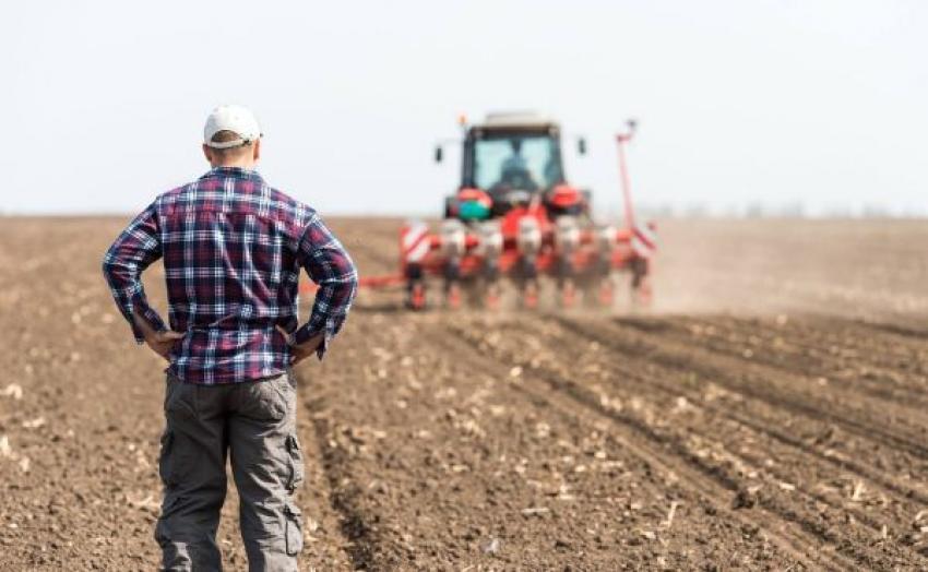 Sprijinul pentru tinerii fermieri veniți din diaspora, prelungit