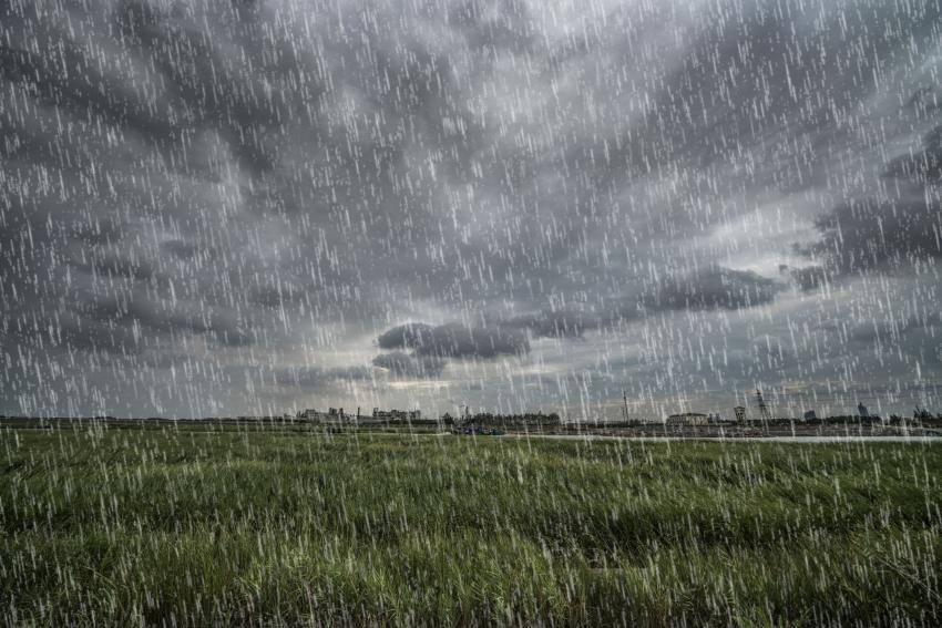 Circa 3.000 de hectare de terenuri agricole din județul Galați, afectate de ploile torențiale din primul semestru
